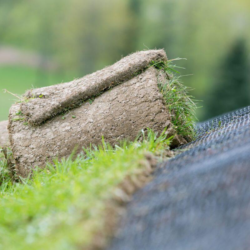 Shutterstock Erosion Company HR